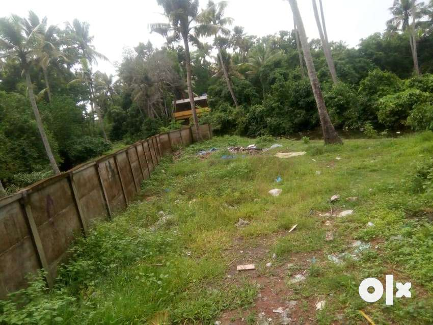 3.5 Cents Residential Plot for Sale near Arookutty 0