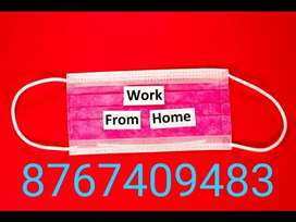 Mega opening for back office data entry for mnc company apply now