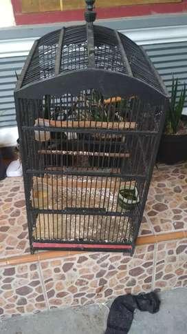 Jual kandang burung
