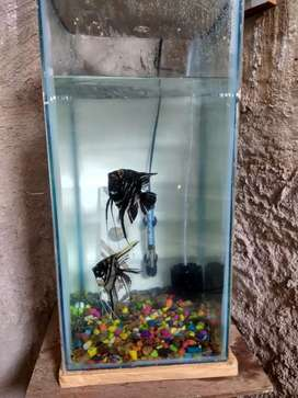 hand made aquarium in very low price with including heater and filter