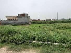 Plot 250 yard for sale in Tdi city sector 116 Mohali