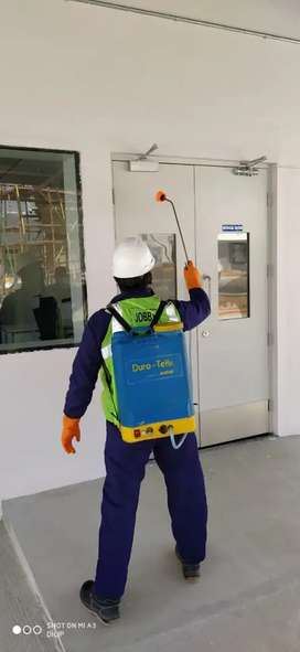 Vacancy for pest control operator