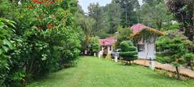 COONOOR OOTY  RENT BRITISH Bungalow guesrhouse cottage short/long stay