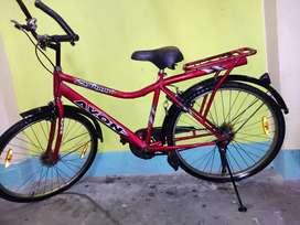 Avon sunami bicycles