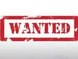 wanted restaternt servsing femal and male