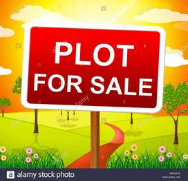 12 Marla plot in Omaxe New Chandigarh with attractive payment plan.