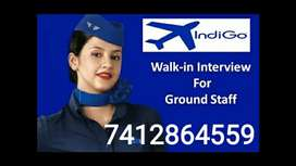 IndiGO Airline Company is An Amazing Place To work with Great People