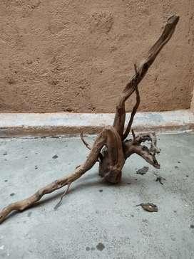 Aqaurium driftwood