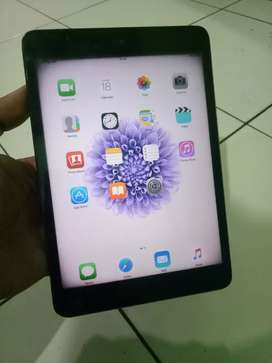 Ipad Mini 1 (16gb)