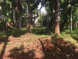 Plot near to Star care hospital Thondayad
