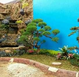 Rumput gajah mini, pembuatan taman, kolam relief