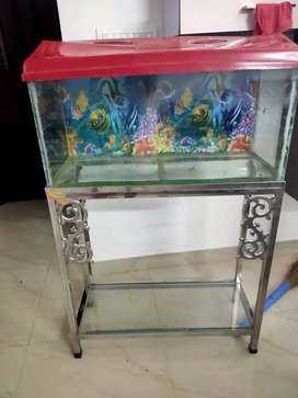 Aquarium with stainless steel stand