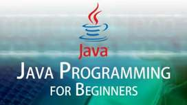Java online class we assure that from beginning stage to pro stage