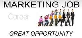 Wanted Digital Marketing and Sales Executive