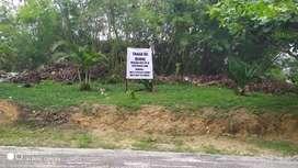 Dijual Tanah daerah rumbai Jln.Pasir Sari