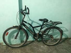 Neelam bicycle
