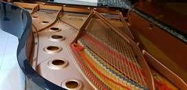 Yamaha Grand Piano C5 Concervatory