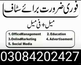 Male,Female,home base, office base Job required