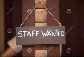 Urgently wanted Chinese Food Cook