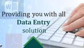 data entry professional operator