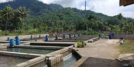 dijual kolam ikan air deras, di Subang
