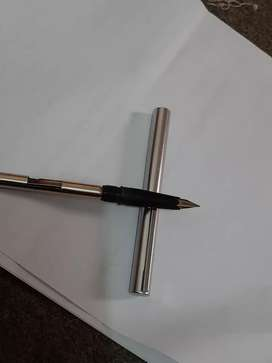 Waterman foution pen