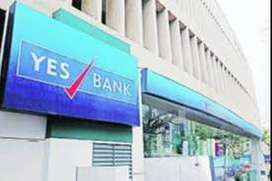 Urgent requirement for YES Bank.