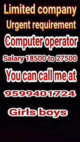 Private limited company computer operator requirement
