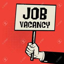 we are urgent hiring for  ticketing executive and ground staff