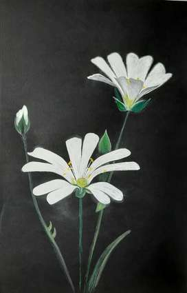 Handmade Paintings .Title - White Flowers,