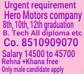 Full time jobs in hero company