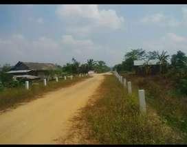 Tanah untuk perkebunan/tambak/perumahan/persawahan