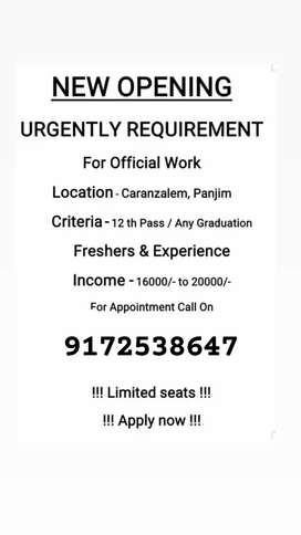 Requirement for official work