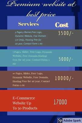 Web techies: Buy your website