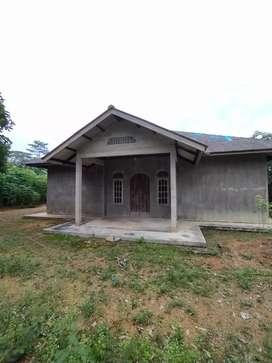 Dijual Rumah beserta kebun