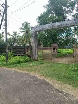 4 and more cent orginal land at edapally  koonammav N-H just  400 mtr