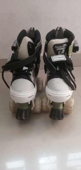 Skate shoes & sketing Guard