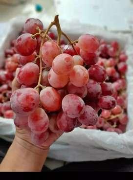 Anggur merah australi fresh 9 kg