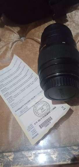Canon Sigma lens