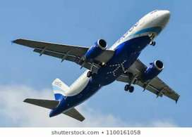 Urgent required for male or female in indigo airlines