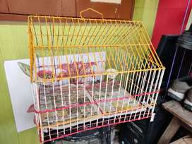 Bird Cage with one door in good condition for sale..