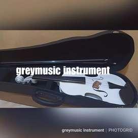 Violin greymusic seri 1880