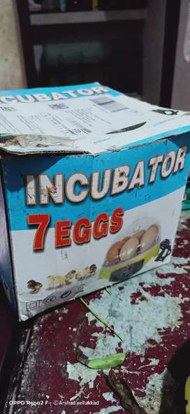 7 eggs Incubator