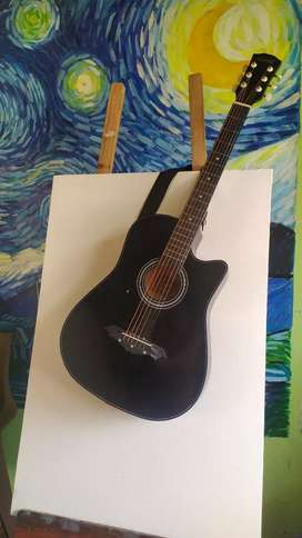 Guitar on Rent,   for photo shoots, and also for use