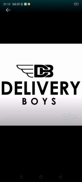 Delivery Boys fresher's joining in Online Companies no target onl