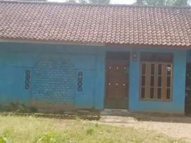 rumah biru tanah luas