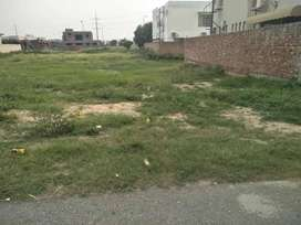 1 Kanal Plot B 310 for sale in DHA phase 6
