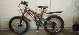 """Imported Fat Tyres cycle 20"""""""