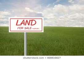 Plots for sale at shiwalik city and Gillco valley