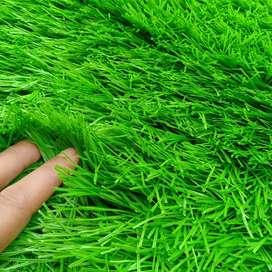 Menjual Rumput Sintetis Import Termurah - Natural